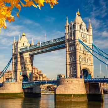 Londra British Study Centres
