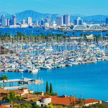 San Diego Language Studies International
