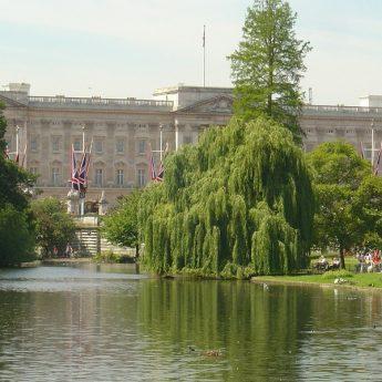 UK - LONDRA GREENWICH ALTERNANZA SCUOLA LAVORO - Giocamondo Study-buckingham-palace-76007_1280-345x345