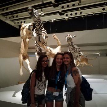 Estate INPSieme 2017: Malaga // Turno 1 Giorno 2 - Giocamondo Study-MALAGA-TURNO2-GIORNO13-FOTO18-345x345