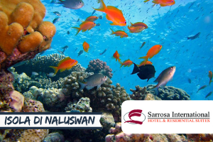 FILIPPINE: STUDIA L'INGLESE ONE-TO-ONE NEL PARADISO DEL SUD EST ASIATICO -