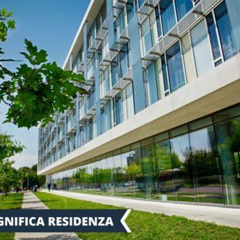Vacanza Studio Toronto CANADA conforme Estate INPSieme | YORK UNIVERSITY – DISCOVERY EXPERIENCE-Vacanza-Studio-INPSieme-2020-Canada-11-345x345