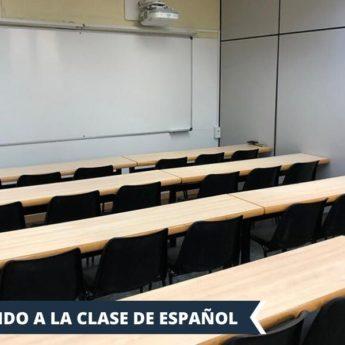 Vacanza Studio Barcellona Spagna conforme INPSieme | BARCA, PLAYA Y GAUDI'-Vacanza-Studio-INPSieme-2020-Spagna-11-1-345x345