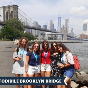 Vacanza Studio New York Stati Uniti Estate INPSieme | NEW YORK UNIVERSITY CITY EXPLORER-Vacanza-Studio-INPSieme-2020-Stati-Uniti-2-4-345x345