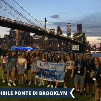 Vacanza Studio a New YORK USA conforme INPSieme | DISCOVERY EXPERIENCE-Vacanza-Studio-INPSieme-2020-Stati-Uniti-5-345x345