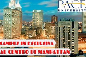 USA – NEW YORK UNIVERSITY DISCOVERY -