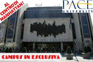 USA – NEW YORK UNIVERSITY CITY EXPLORER -