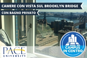 USA – NEW YORK PACE UNIVERSITY – DISCOVERY EXPERIENCE -