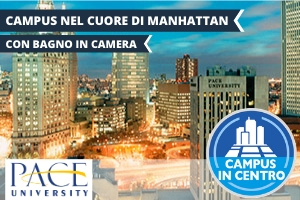 USA – NEW YORK PACE UNIVERSITY – BROADWAY EXPERIENCE -