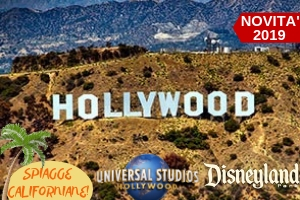 Vacanze Studio estero Estate INPSieme 2019-Vacanze-Studio-USA-Inpsieme-8-6