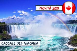 Vacanze Studio estero Estate INPSieme 2019-Vetrina-CANADA-–-TORONTO-DISCOVERY-YORK-UNIVERSITY