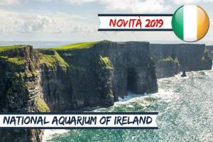Vacanze Studio estero Estate INPSieme 2019-Vetrina-IRLANDA-–-GALWAY-GMIT-UNIVERSITY