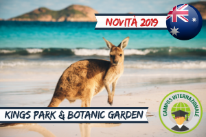 Vacanze Studio estero Estate INPSieme 2019-Vetrina-Australia-1