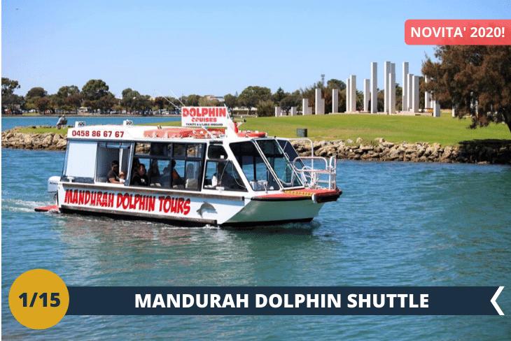 """NEW! ESCURSIONE DI INTERA GIORNATA a MANDURAH & DOLPHIN CRUISE (INGRESSO INCLUSO). Visiteremo la città di Mandurah dove ci aspetta il """"Mandurah Dolphin Shuttle"""" un battello che ci permetterà di spostarci attraverso la città per scoprire le meravigliose riserve naturali nella speranza di avvistare i delfini nel loro ambiente naturale… siate pronti a scattare foto uniche!"""