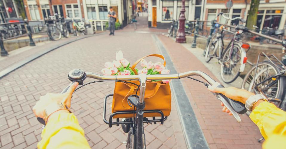 Paesi Bassi - Anno all'estero conforme ITACA INPS - Giocamondo Study-Progetto-senza-titolo-30-958x500