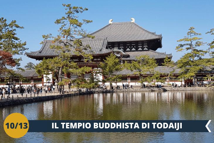 TODAIJIè un tempio buddhista tra i più importanti e conosciuti del Giappone, è la più grande costruzione interamente in legno del Mondo, con al suo interno una grande statua di Buddha. Esperienza incredibile a cena in un Ninja Dinner Restaurant. (escursione di mezza giornata)