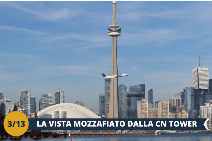 CN TOWER (INGRESSO INCLUSO):con i suoi553 metri totali di altezza, è la quarta più alta struttura di questo tipo esistente al mondo! Un ascensore vi porterà in alto per godere di una vista eccezionale, che dà la possibilità di ammirareil panorama sulla città di Toronto a 360 gradi. (escursione mezza giornata)
