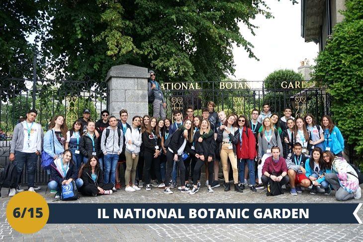 Visita al NATIONAL BOTANIC GARDEN, un luogo storico fondato nel 1795 dalla ROYAL DUBLIN SOCIETY che con le sue enormi serre in vetro ed i suoi giardini caratteristici custodiscono ben 20.000 piante provenienti da tutto il mondo. Le sue serre vittoriane, il roseto, la casa delle orchidee, il giardino cinese, il giardino roccioso ti faranno pensare di essere dentro una fiaba! (escursione di mezza giornata)