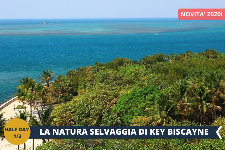 KEY BISCANE e il suo ambiente selvaggio, dove potrete godere di una delle più belle spiagge degli Stati Uniti e fare delle passeggiate tra mangrovie e palme (escursione di mezza giornata)