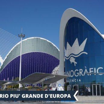 Vacanza Studio a Valencia e Formentera Spagna conforme Estate INPSieme | CAMPUS UNIVERSITARIO INTERNAZIONALE-Vacanza-Studio-INPSieme-2020-Spagna-3-345x345