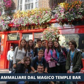 IRLANDA - DUBLINO MARINO TRINITY COLLEGE IRELAND DISCOVERY - Giocamondo Study-3-8-345x345