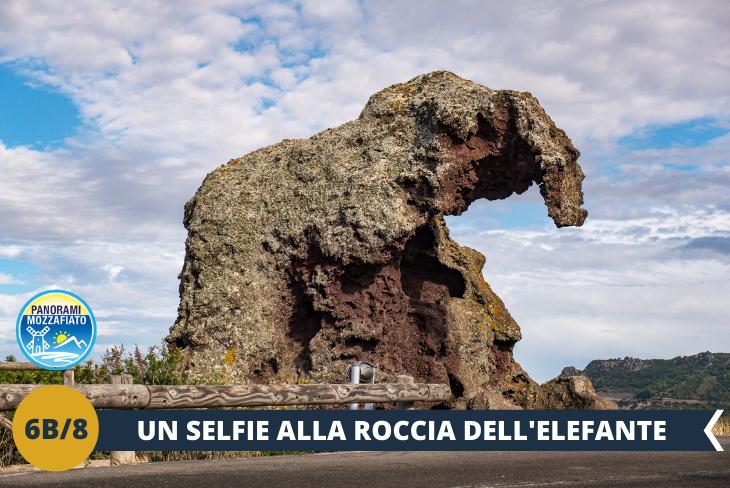 """Roccia dell'elefante, dopo aver visitato la Rocca di Castelsardo, non possiamo non concludere la giornata se non con un selfie """"acchiappa like"""". Potremo ammirare inoltre la famosa Roccia dell'Elefante, un enorme masso che assomiglia ad un elefante per la sua conformazione (escursione mezza giornata)"""