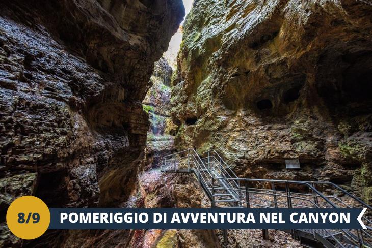 Canyon Rio Sass - Emozionante escursione trekking al Canyon Rio Sass, canyon incastonato tra rocce sottili e cascate tipiche delle gole. Potremo avventurarci al suo interno attraverso un percorso di passerelle e scalinate, per ammirare le meraviglie della natura e per andare alla scoperta di acque vorticose, cascate, marmitte dei giganti, fossili, stalattiti e stalagmiti. (ESCURSIONE MEZZA GIORNATA)
