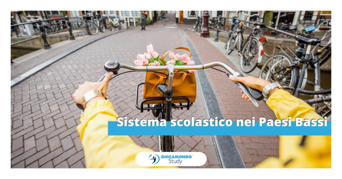 Sistema scolastico nei Paesi Bassi | Anno all'estero - Giocamondo Study-Grafiche-blog-DEM-3-1