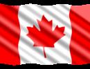 corso di lingua all'estero Toronto1